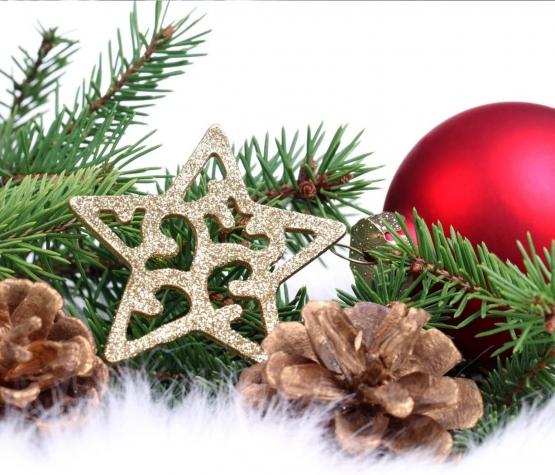 Честита Коледа и Весела Нова година!