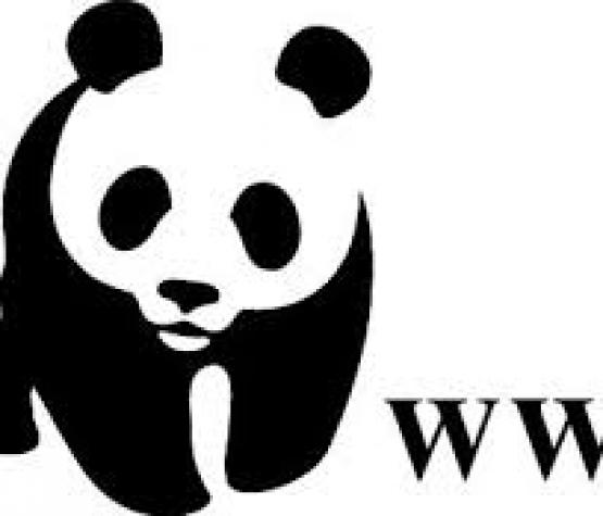 Посещение и презентация на WWF - световен фонд за дивата природа